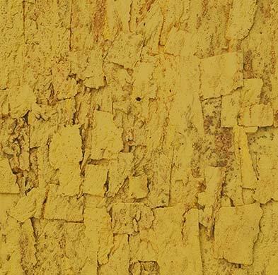 Sandstone Saffron